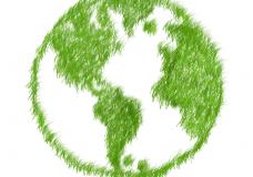 Få en grønnere hverdag